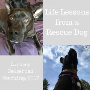 Lindsey Heiserman Coaching, 2017